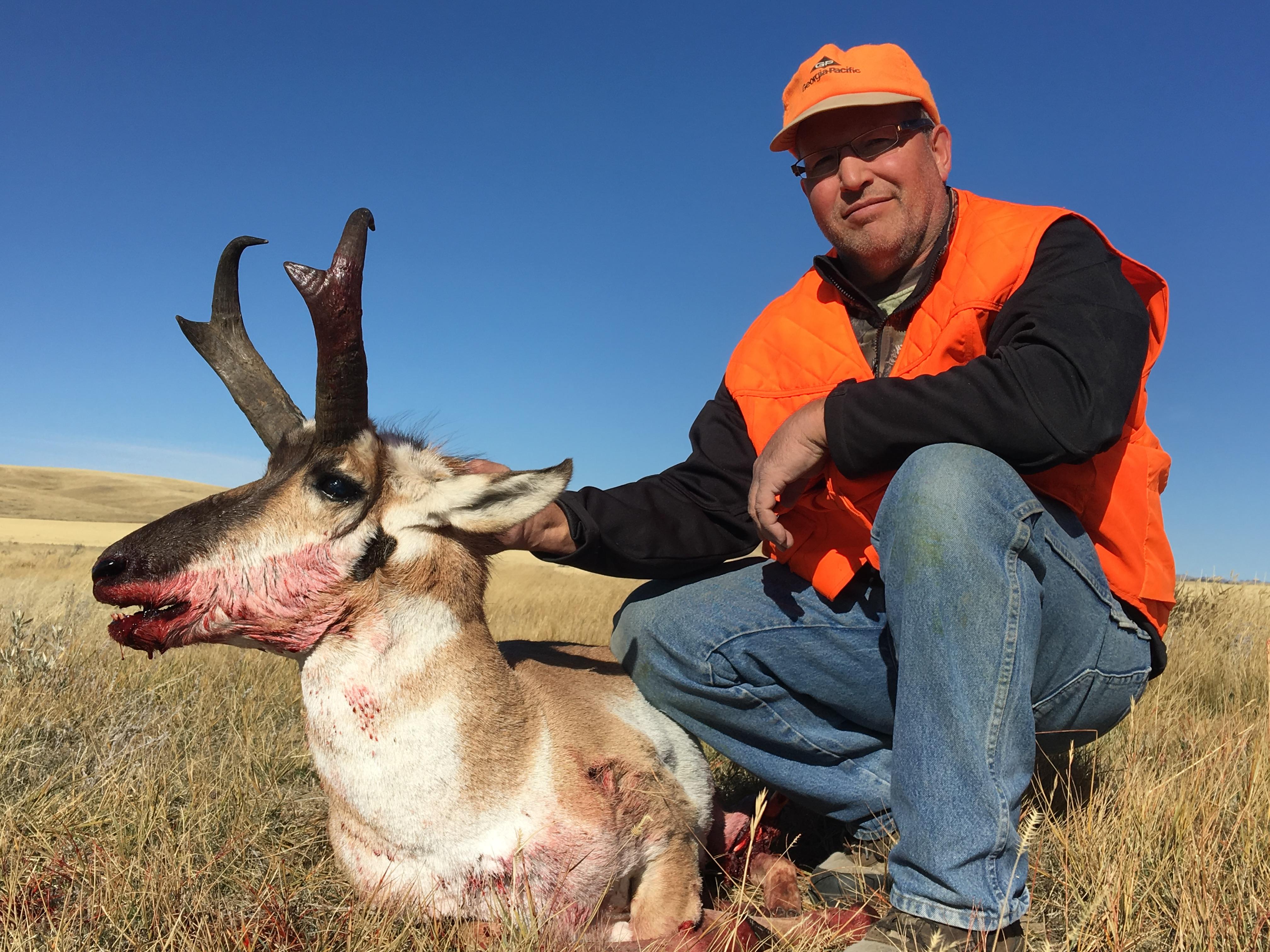 17-antelope