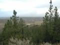 Scenery-creek-bottom